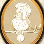 Chouette-chevêche