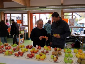 Rencontres vergers SIAV 2015 Vers photo D ERNST (9)